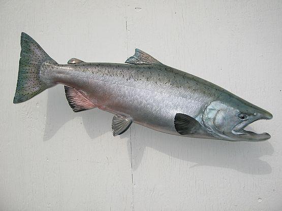 King Salmon Fish Mount