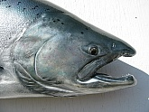Kenai King Salmon Head Reproduction : King Salmon Fiberglass Replica