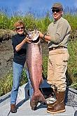 Kenai River King Salmon: Kenai King Salmon - Fiberglass Reproductions